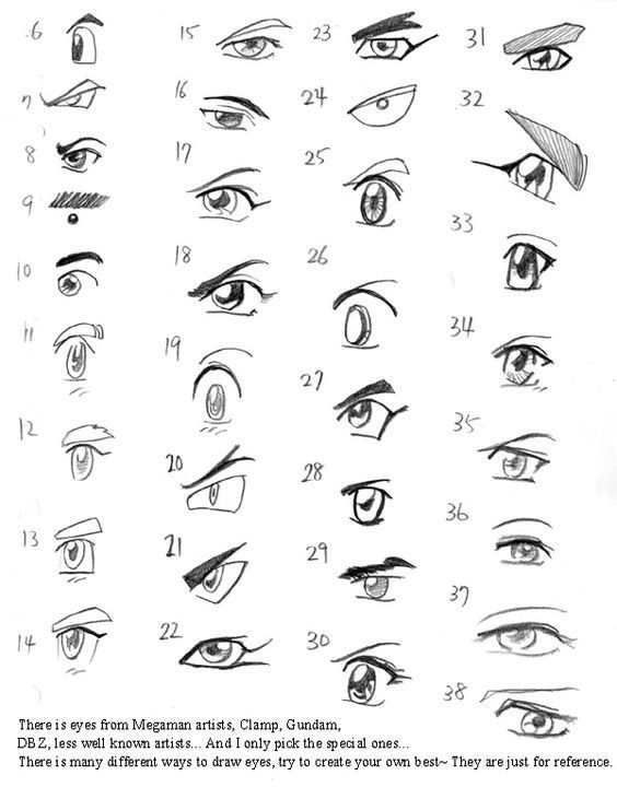 Character Design Collection: Eyes Anatomy   Anatomy ...