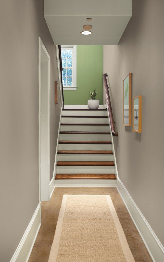 In The Moment Behr Colors Trending Paint Colors Behr