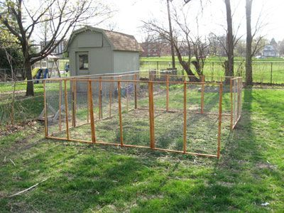 1000+ ideas about Chicken Wire Fence on Pinterest | Fence