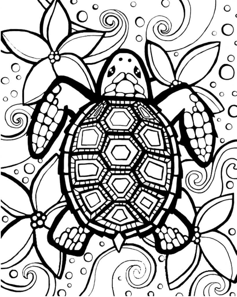 Mine Turtle Coloring Pages on a budget