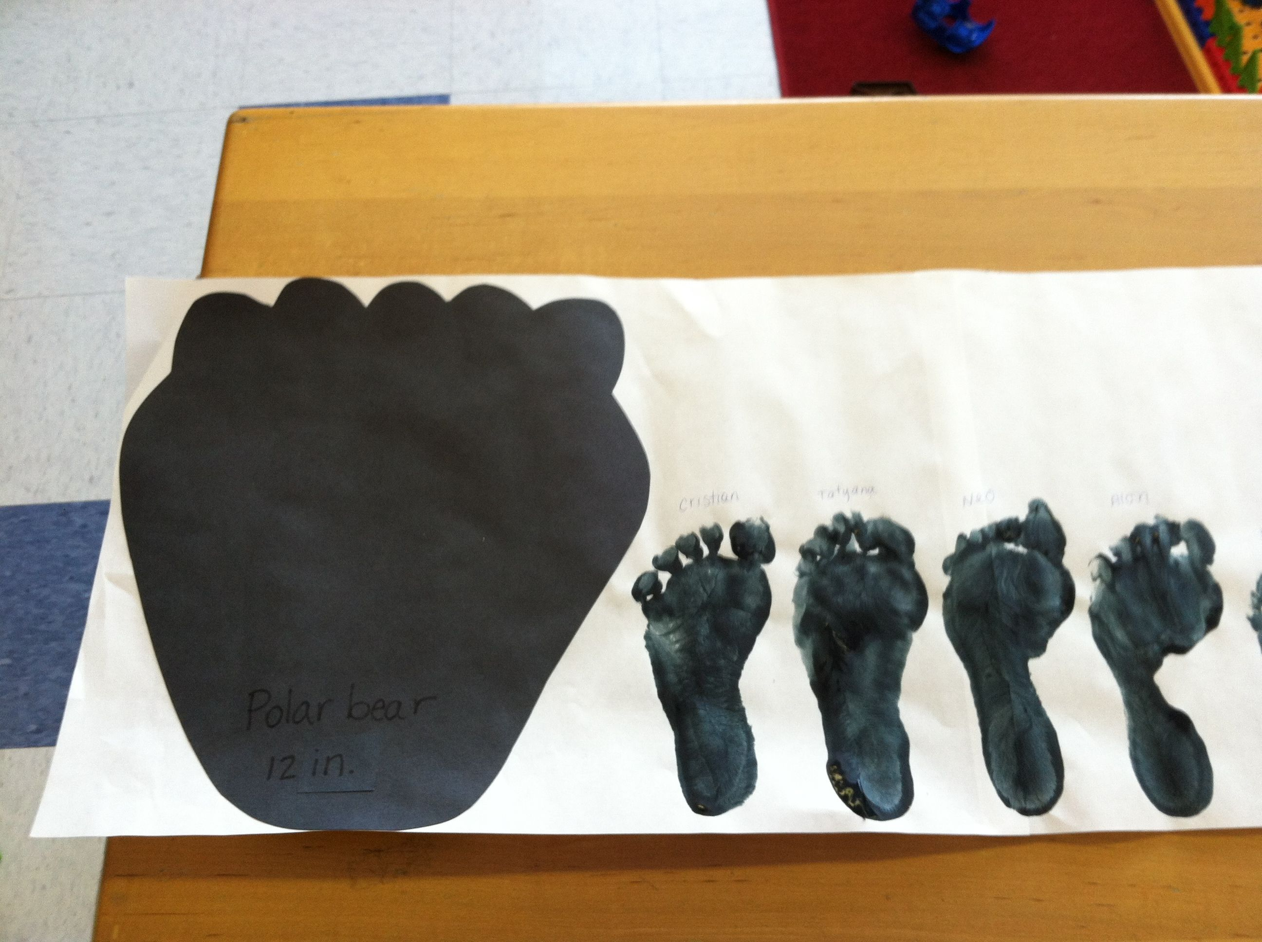 Measure Children S Footprints Next To A Polar Bear