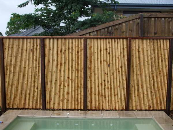 Privacy fence ideas bamboo fence panels outdoor swimming for Pool privacy screen