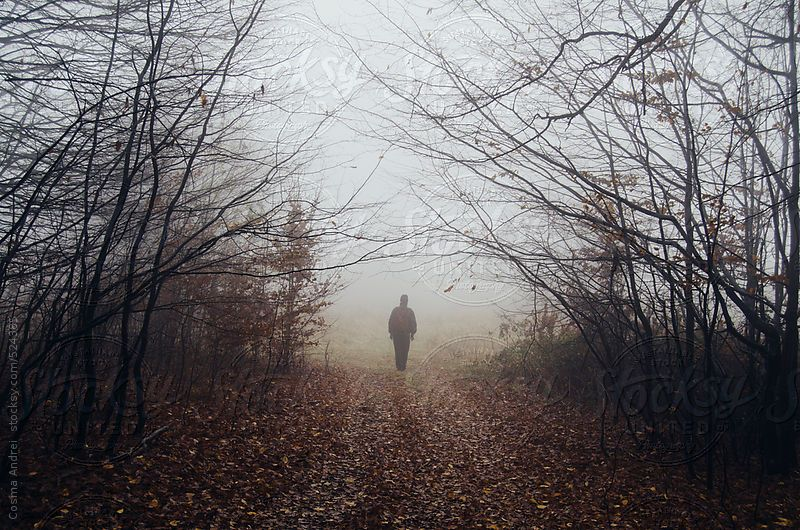 Man Walking In Mysterious Dark Forest With Fog In Autumn Stocksy Photocosma Nature Photography Fog Forest