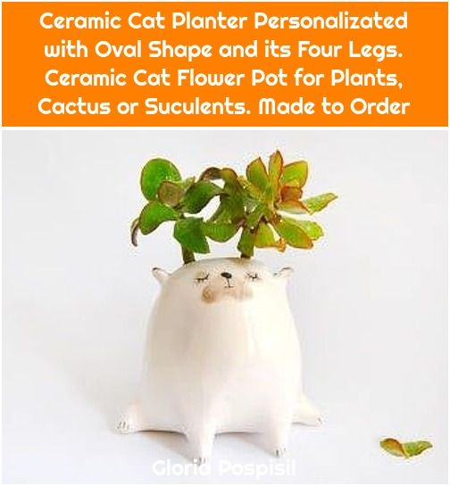 1. Ceramic Cat Planter Personalizated with Oval Shape and its Four Legs. Ceramic Cat Flower Pot for Plants, Cactus or Suculents. Made to Order Ceramic Cat Planter Personalizated with Oval Shape and its Four Legs. Ceramic Cat Flower Pot for Plants, Cactus or Suculents. Made to Order Ceramic Cat Planter Personalizated with Oval Shape and […]  #Cactus, #Cat, #Ceramic, #Flower, #Legs, #Order, #Oval, #Personalizated, #Planter, #Plants, #Pot, #Shape, #Suculents
