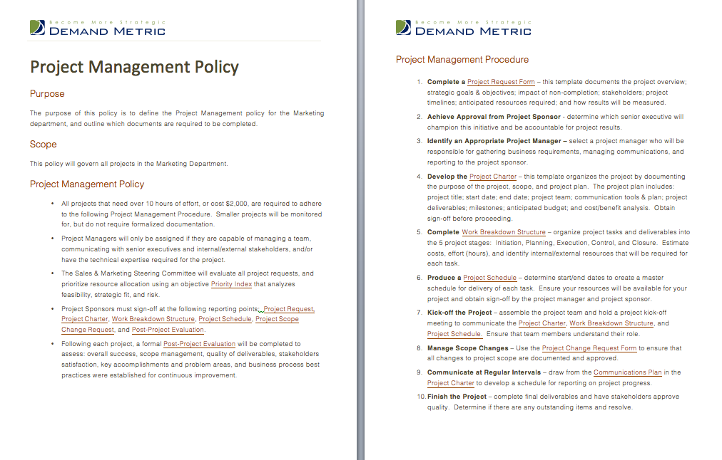 Project Management Policy A Template To Document A Project - Project management procedure template