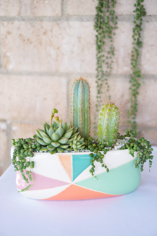 Diy summer inspired planters dalla vita succulents