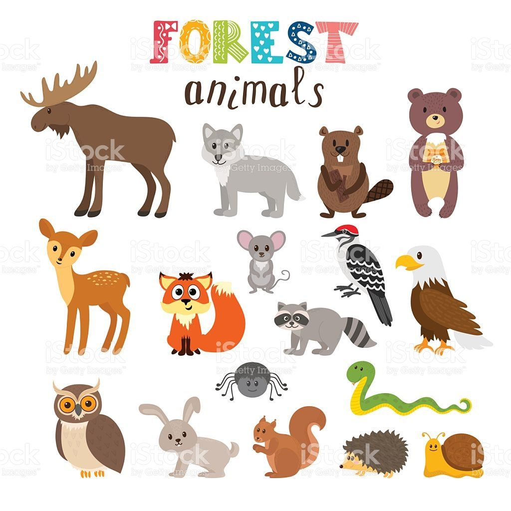 Image result for cute animal cartoon images Forest