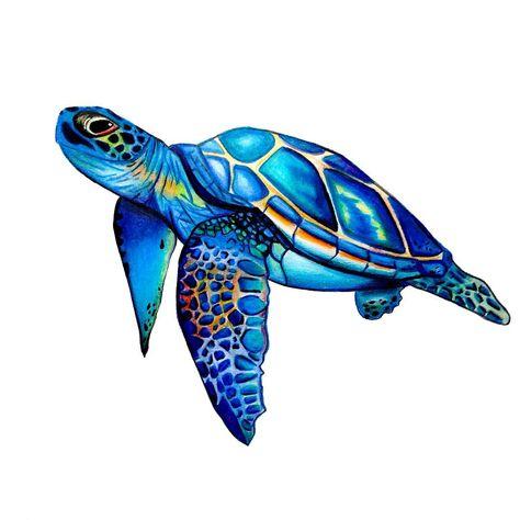 Pin By Juli Sian On Art Sea Turtle Watercolor Turtle Watercolor Sea Turtle Painting