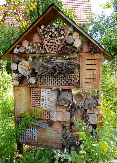good insect house - this is gorgeous!!!!