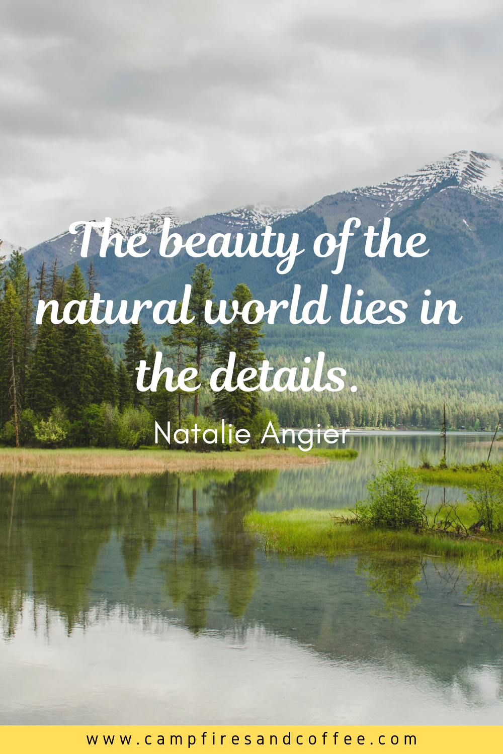 15 Quotes To Inspire You Nature Quotes Inspirational 15th Quotes Nature Quotes
