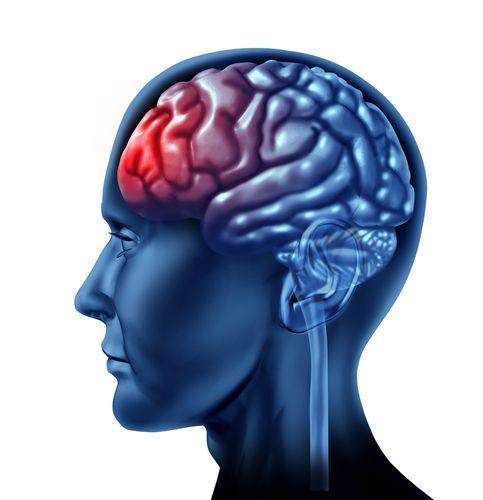 認知評価はあなたのトレーニングとメンタルエクササイズが統合されています。