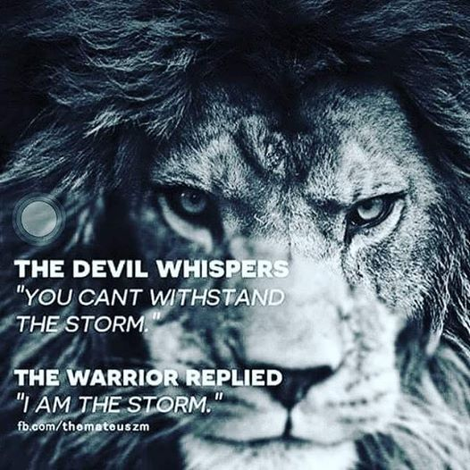 Warrior Strength