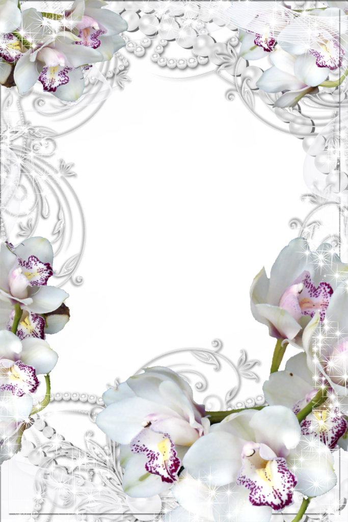 Transparent Png Photo Frame With White Orchids Printable Frames Clip Art Freebies Clip Art Borders