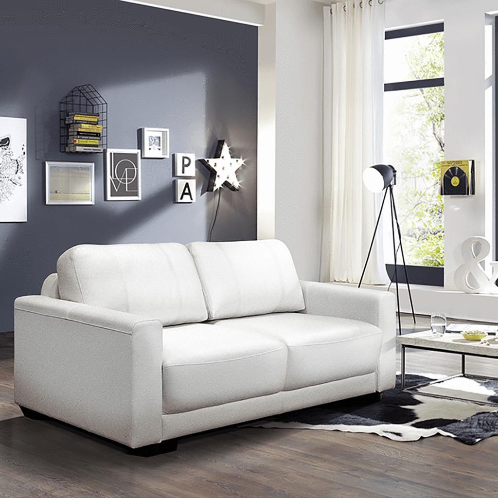 Toronto Queen Size Loveseat Sleeper Sofa | Loveseat ...