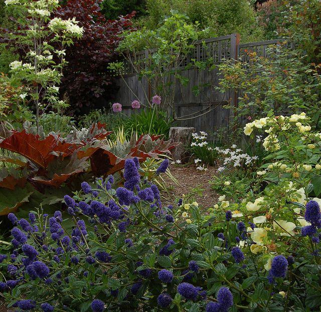 Native Home Garden Design: Make A House A Home