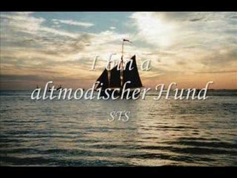STS - I bin a altmodischer Hund (con immagini) | Canzoni