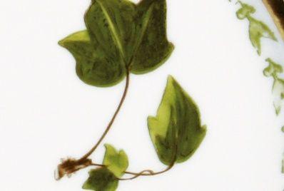 Present. Verdures | En el jardín | Comprar Tienda Online | Pia Rubio
