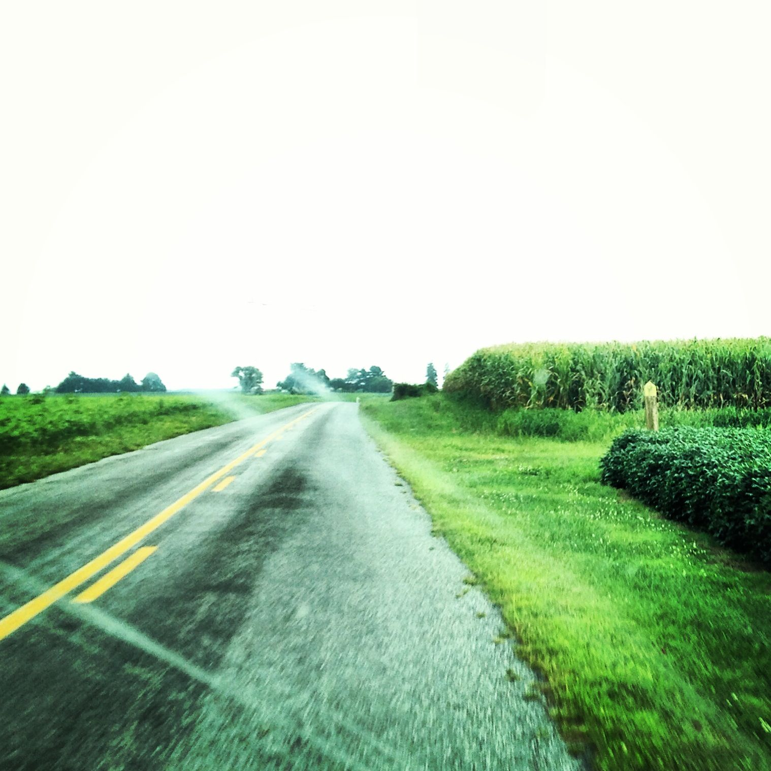 Back roadn' thru Salem County