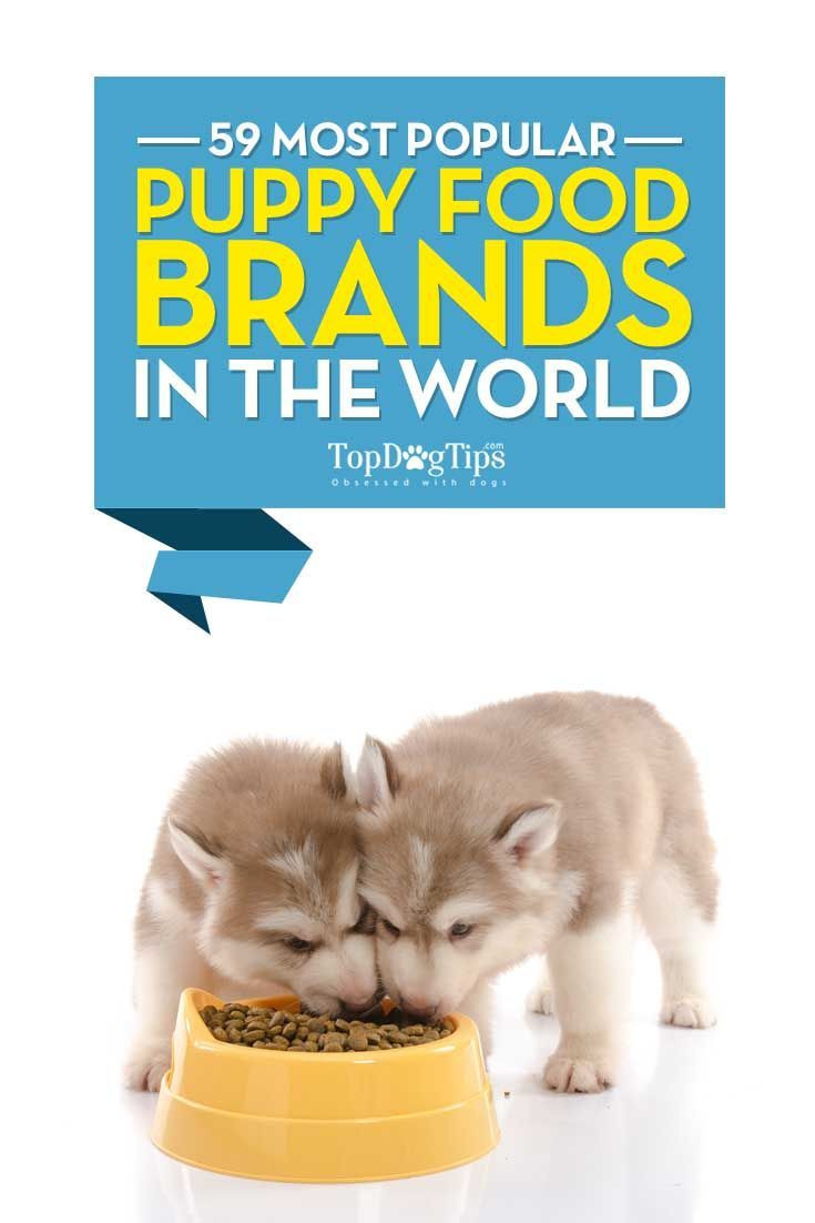 59 Most Popular Puppy Food Brands Puppy Food Brands Puppy Food
