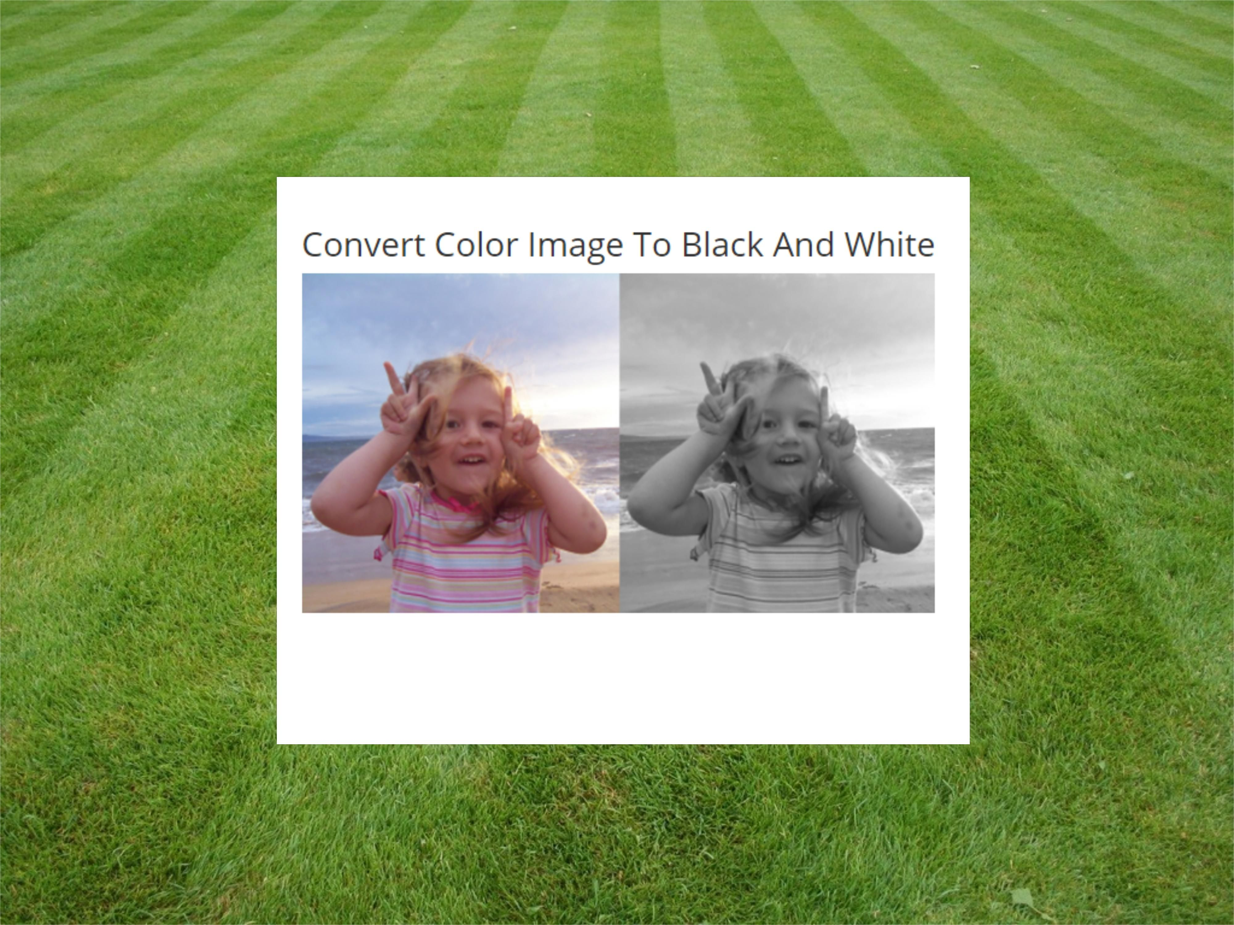 Want to Convert Color Image To Black And White Hassle free
