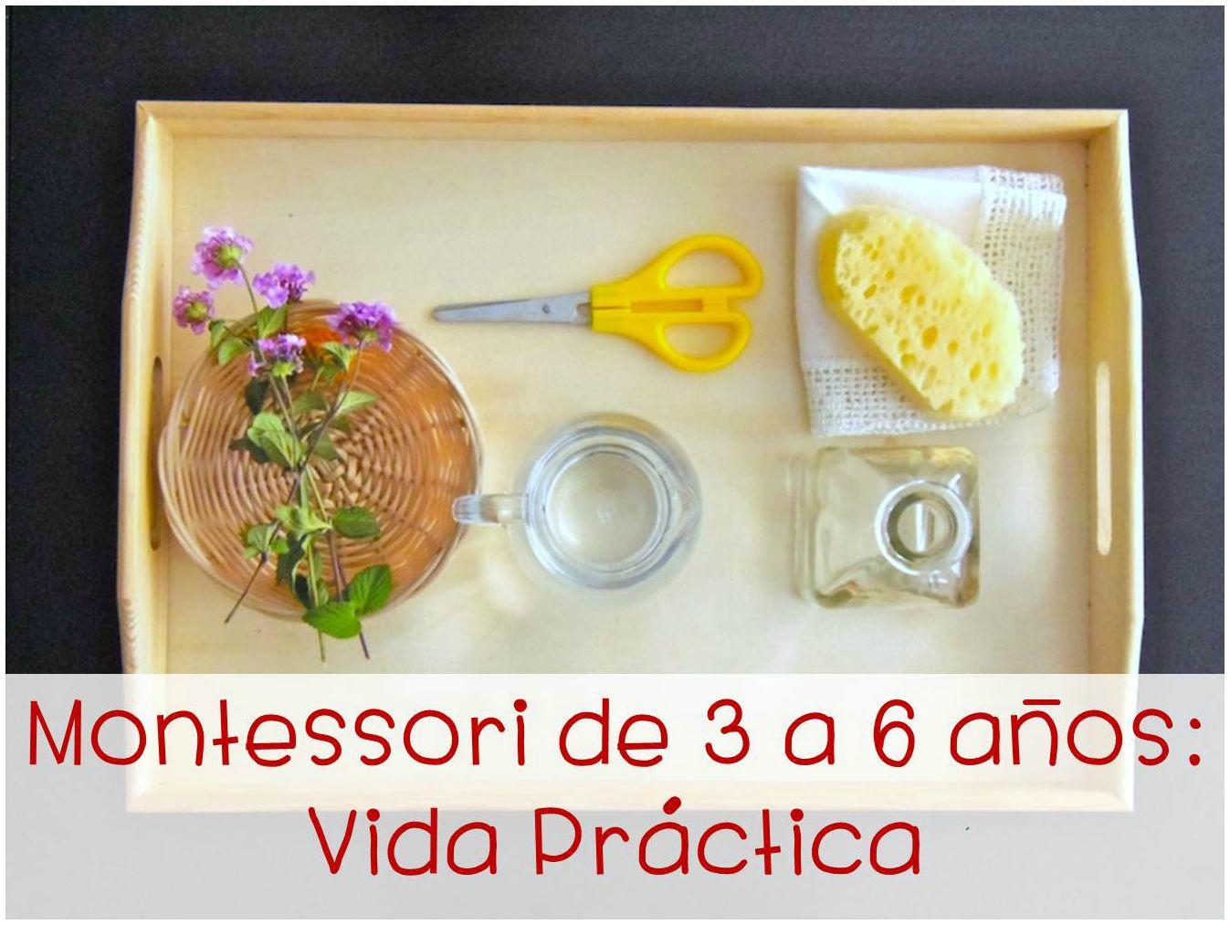 Curso Online Montessori De 3 A 6 Anos Vida Practica Cursos