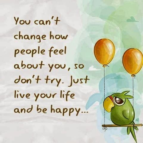 You can't change how people feel about you, so don't try Just live your life and be happy.