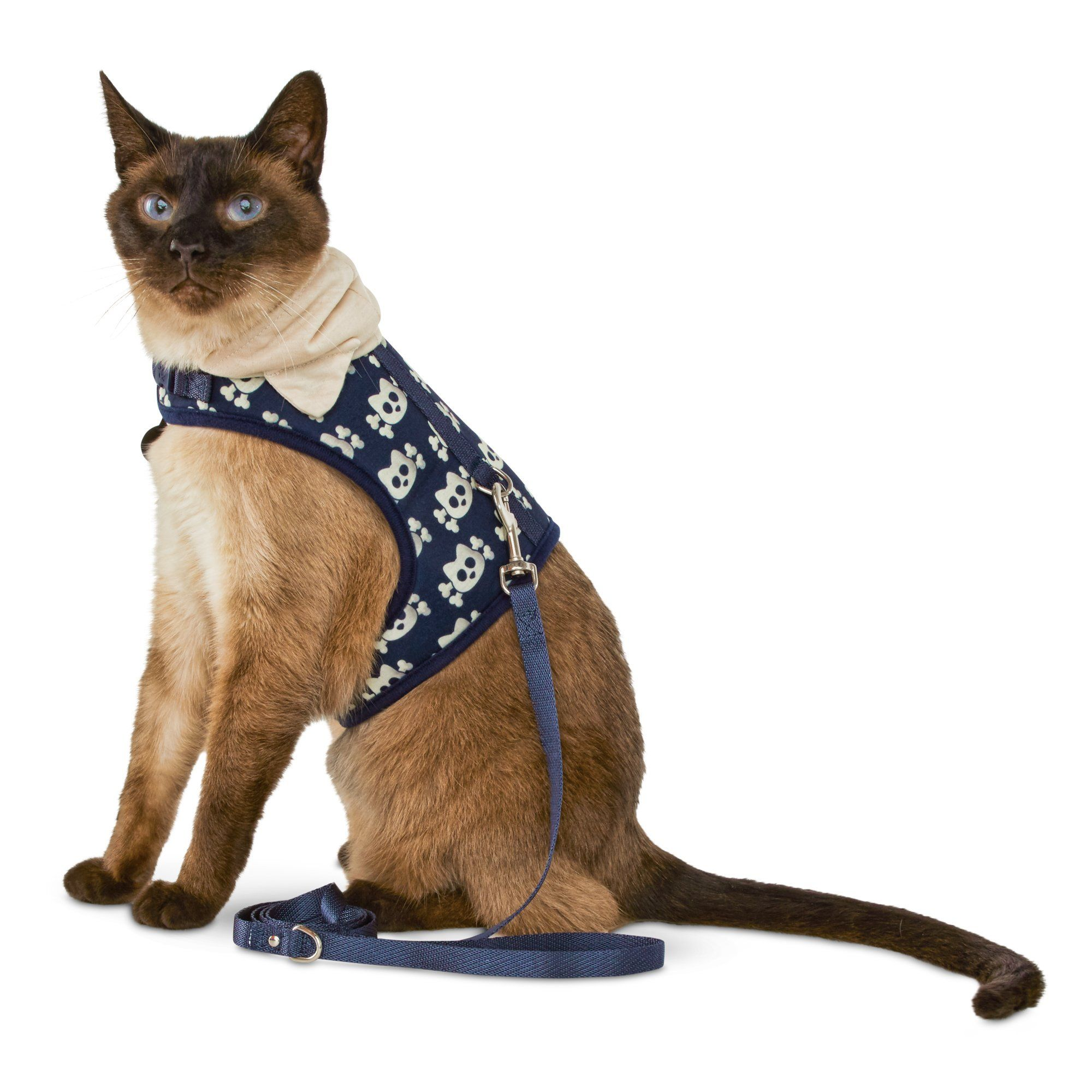 Bond Co Kitty And Crossbones Hooded Cat Harness And Leash Set Petco Cat Harness Cat Collars Kitty