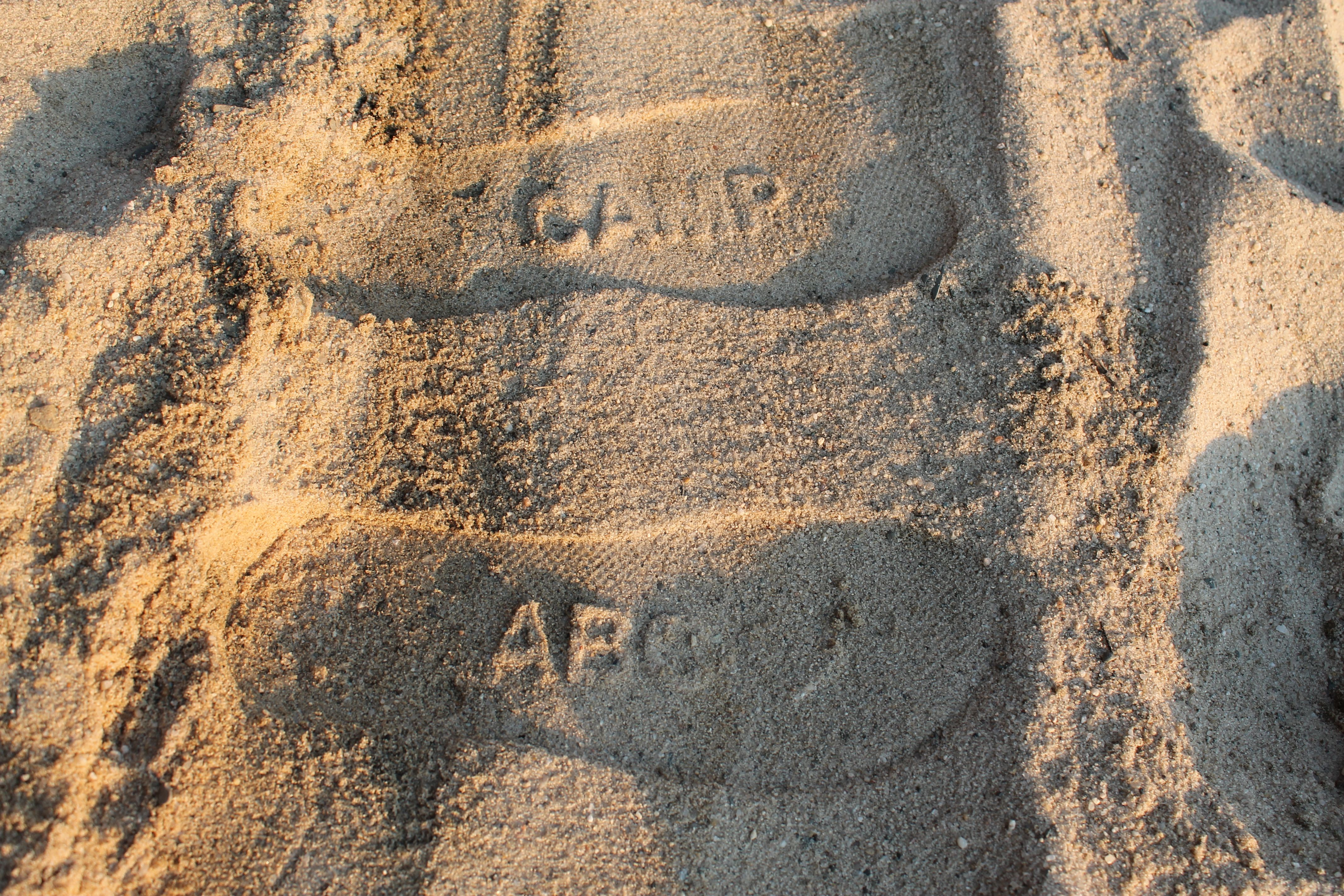"""""""I enjoyed my summer at Camp ABC and have had the"""