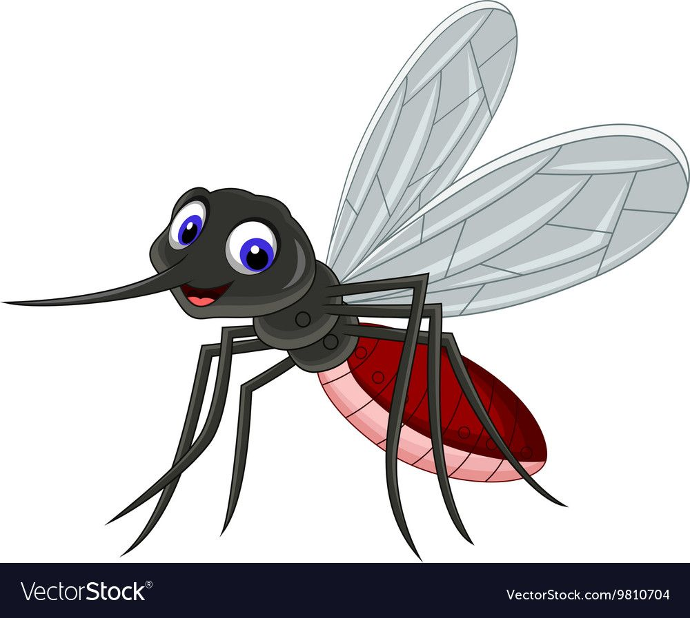 Vector Illustration Of Cute Mosquito Cartoon Download A Free Preview Or High Quality Adobe Illustrator Ai Eps Cartoon Cute Cartoon Pictures Cartoon Animals