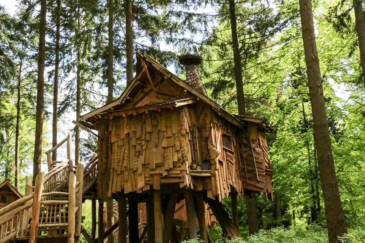 Wildlife Baumhaus, Schlafzimmer design, Schlafzimmer