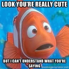 Look You Re Really Cute But I Can T Understand What You Re Saying Finding Nemo Marlin Disney Finding Nemo Finding Nemo Nemo