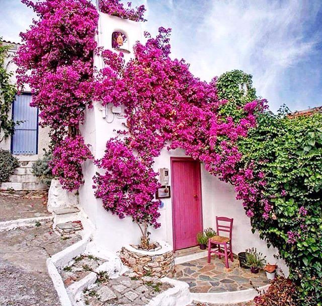 Alonissos, Historical Paths of Old Town. #griechenland #landscape #ecosystem #alonissos #alonnisos #alonissosisland #alonissosbeach #alonissosbeachhotel #skiathos #skopelos #visitgreece #visitsporades #grecia #isolegreche #greekislands #greece #greek #vacation #holidays #vacances #honeymoon #vakantie #travelgram #travel #travelstyle #picoftheday #greece #greek