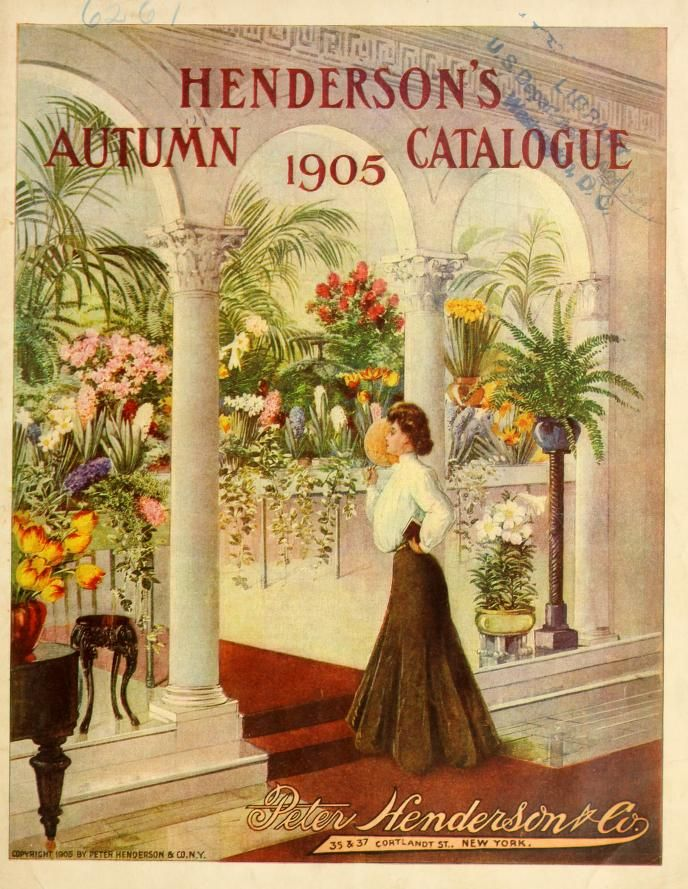 Henderson's Autumn Catalogue : 1905