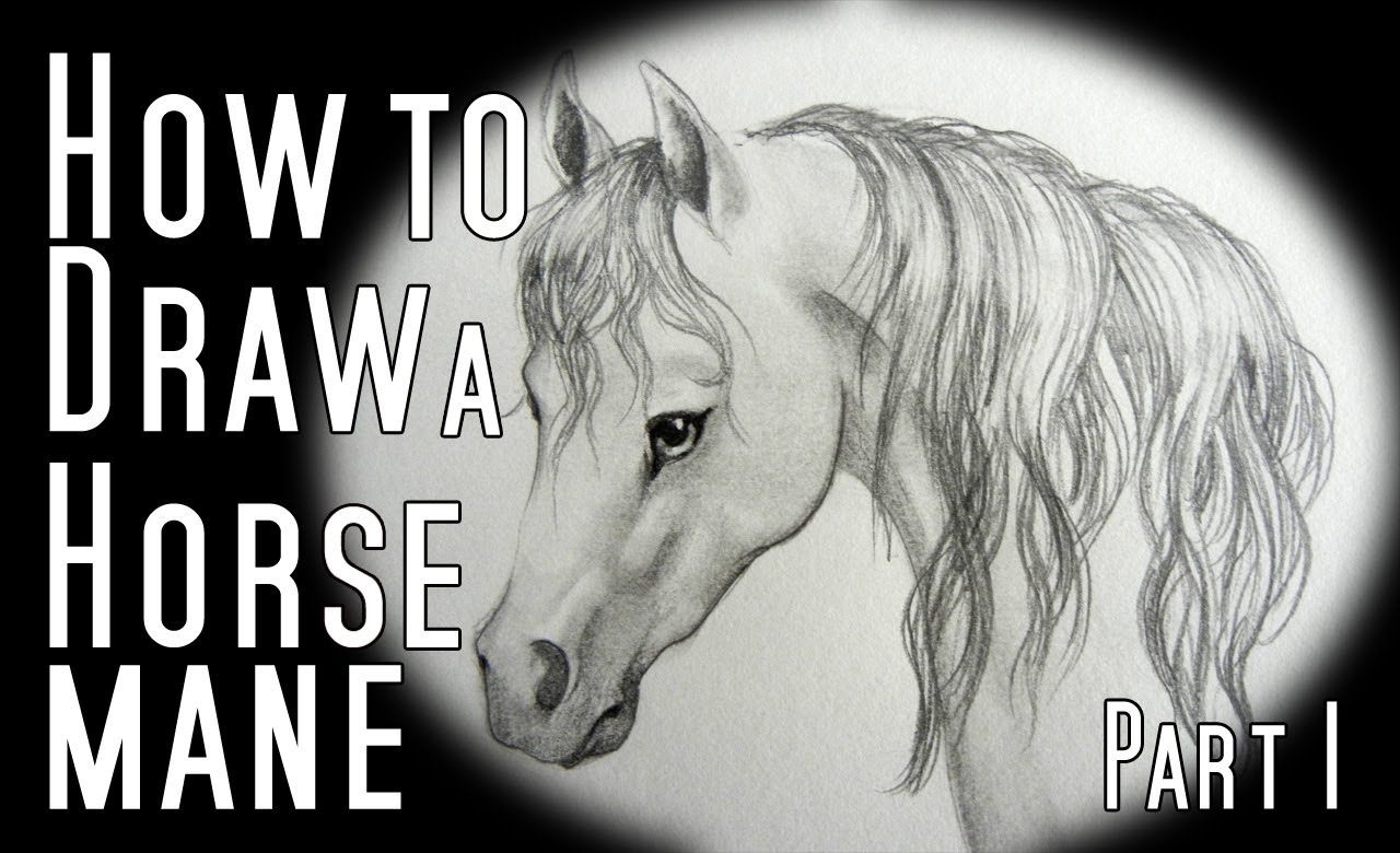 Tutorials Pinterest Paard Manen, Tekenen En Tekenen How To Draw A Horse  Mane Front And
