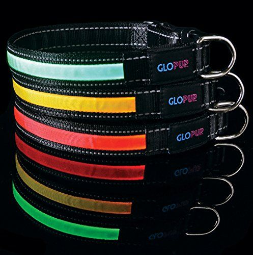 Glopup Led Dog Collar Yellow Extralarge Glow In The Dark Makes Your Dog Visible And Safe Reflective Stitching Led Dog Collar Night Reflective Dog Collar