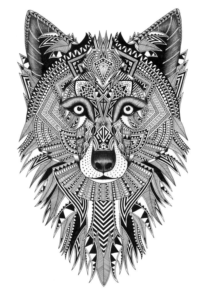 Grey Wolf | Art, Animal coloring pages, Fox coloring page