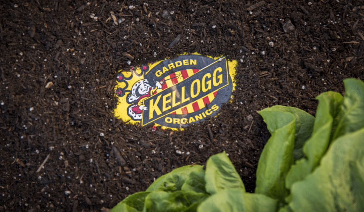 Kellogg Garden Raised Bed Garden Soil & Potting Mix