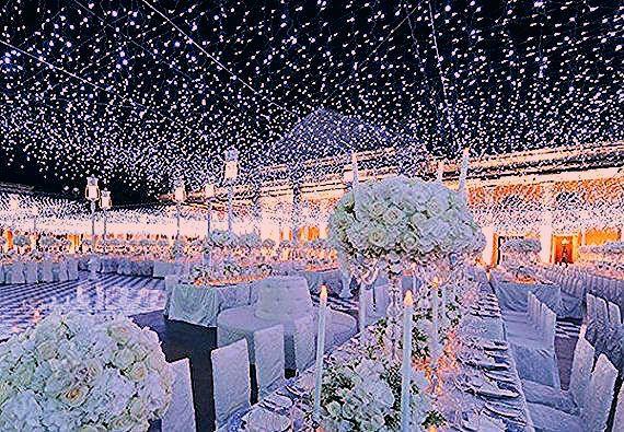 Photo of 164 feet 400 LED String Fairy Lights Wedding Garden Party Xmas Light, WHITE/Cool White Linkable