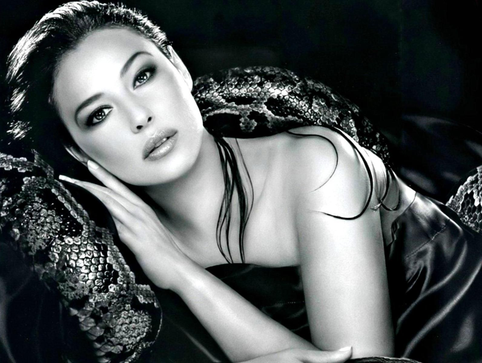 60 sexy monica bellucci hd wallpaper monica bellucci and hd 60 sexy monica bellucci hd wallpaper voltagebd