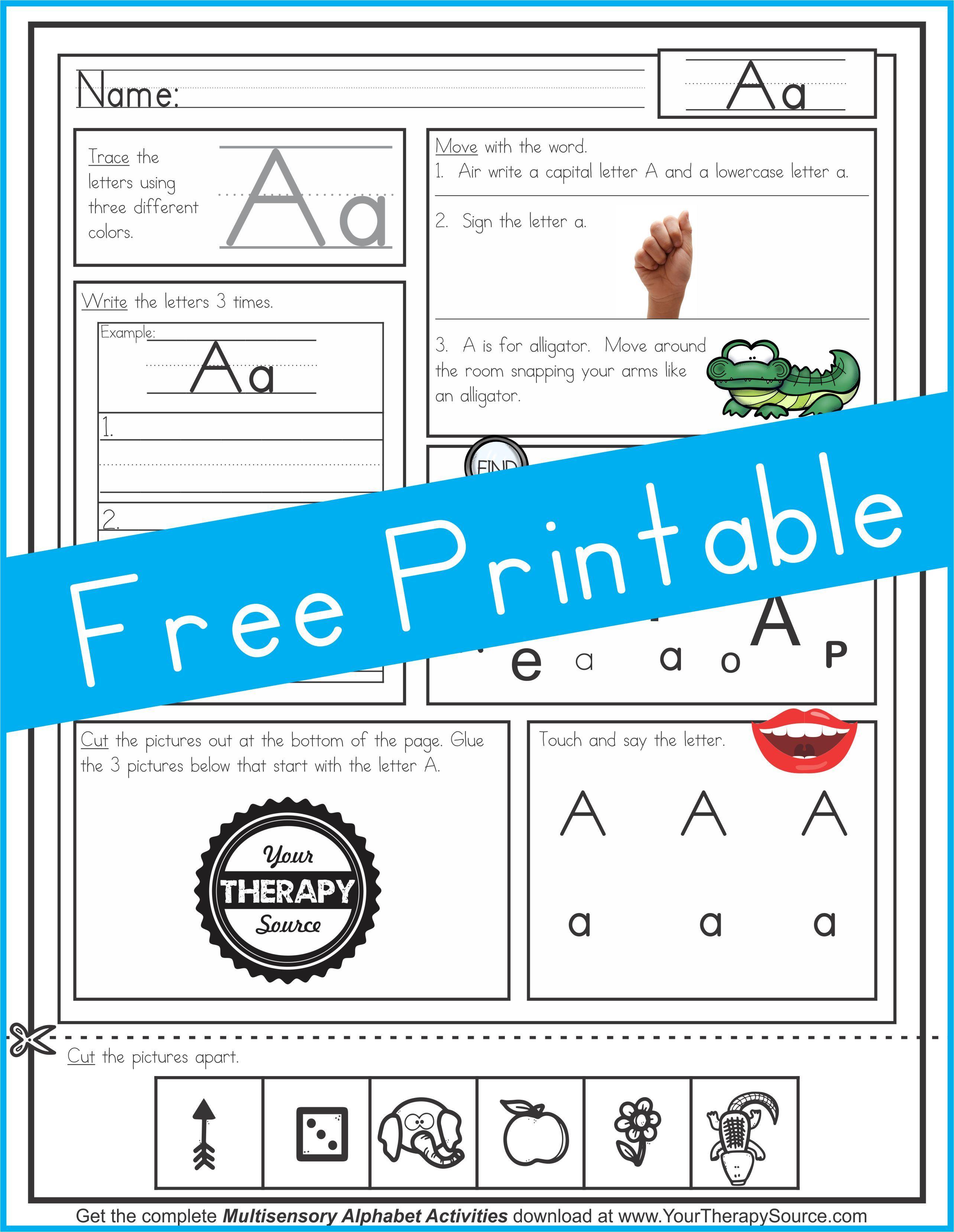 Multisensory Alphabet Freebie