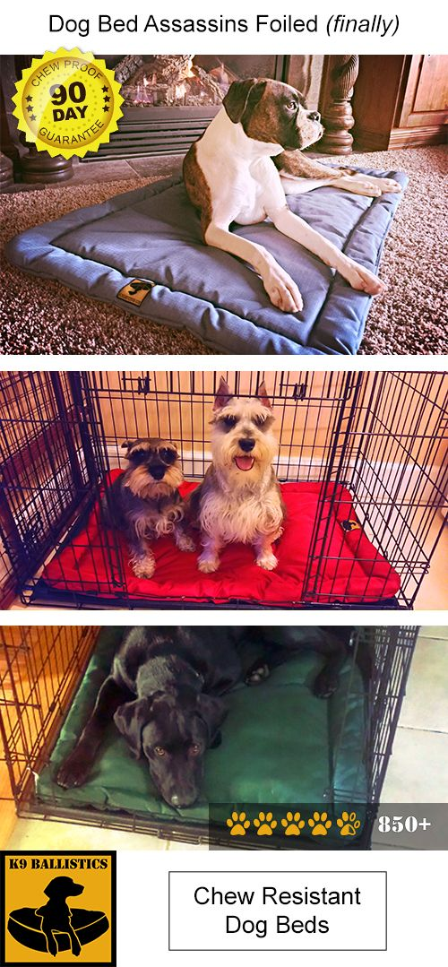 Tough Dog Crate Pad Dogs Pets Puppies