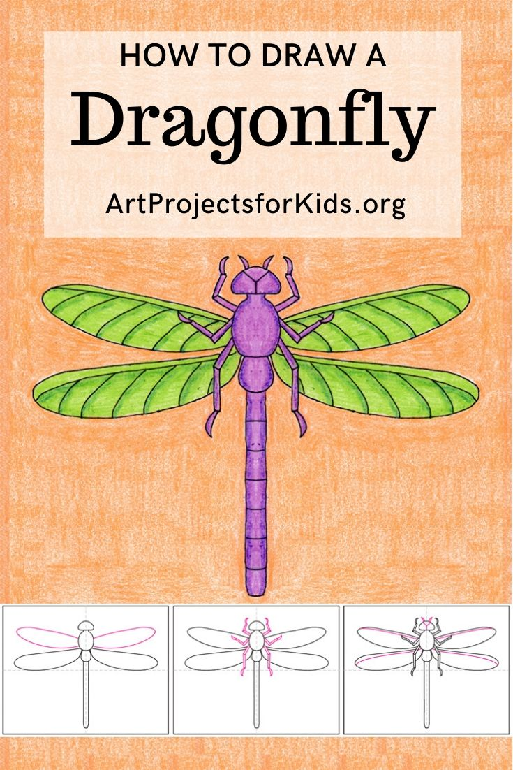 Photo of How to draw a Dragonfly