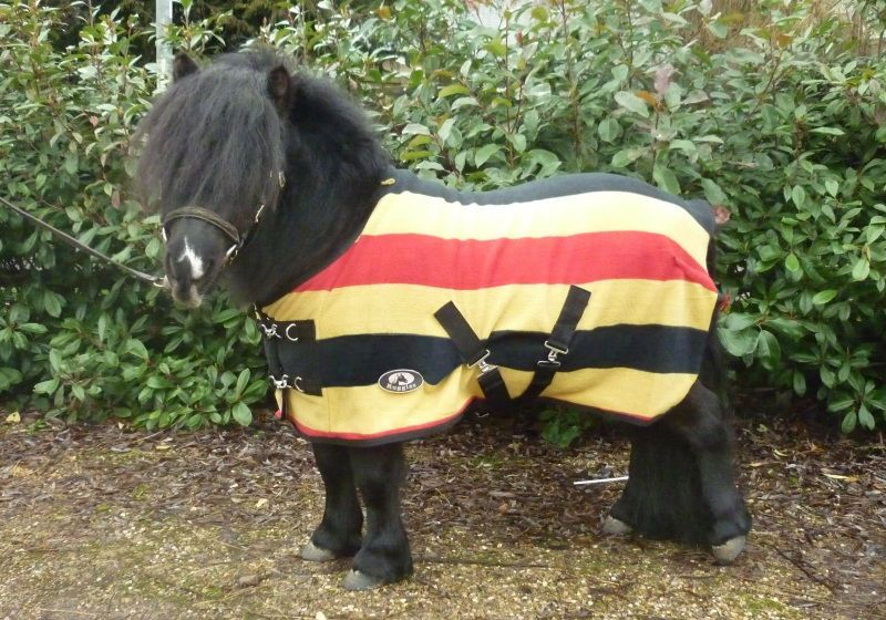 Ruggles Shetland Newmarket Stripe Fleece Pony Rug 2 9 4