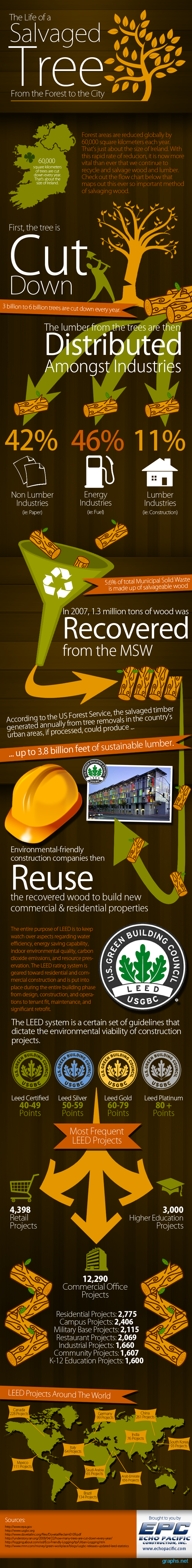 Cutting Down Trees Facts | Graphs.net  sc 1 st  Pinterest & Cutting Down Trees Facts | Graphs.net | Go Green Infographics ...