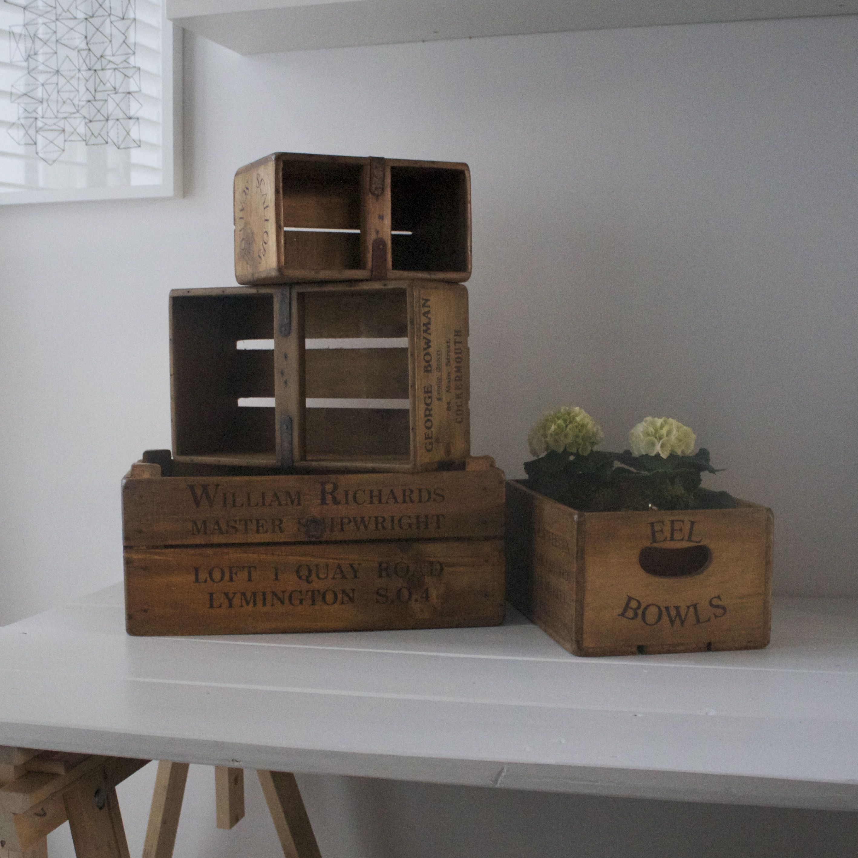 Design Vintage Wood Crates Fish Crates Herb Boxes Vintage Wood Crates Wood Crates Crate Herbs