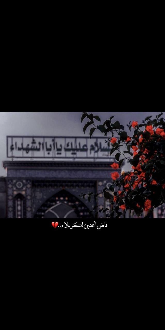 Pin By سلم لم On ل امامي حسين In 2020 Sky Photography Nature Best Islamic Images Karbala Photography