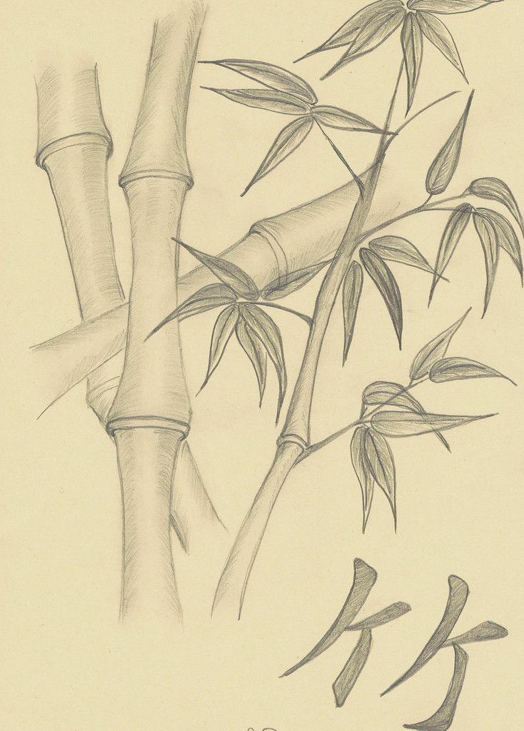 Bildergebnis Fur Bambus Malen Aquarell Allerlei Art Und Porcelain