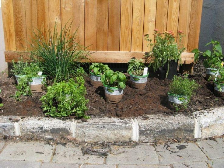 Garden Cottage Herb Garden Design With Vegetable And Herb Garden Design Tips Als,  #als #Cott... #kleinekräutergärten