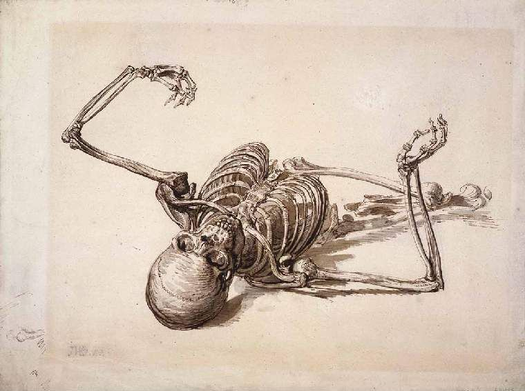 james ward, the skeleton of a human being, c.1801 | the researcher, Skeleton