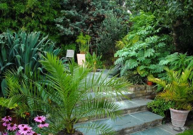 tropical backyard ideas | exotic tropical patio ~ agit garden ... - Tropical Patio Design